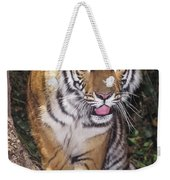 Bengal Tiger By Tree Endangered Species Wildlife Rescue Weekender Tote Bag