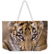 Bengal Tiger Cub And Peacock Feather Endangered Species Wildlife Rescue Weekender Tote Bag