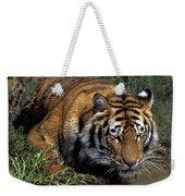 Bengal Tiger Drinking At Pond Endangered Species Wildlife Rescue Weekender Tote Bag