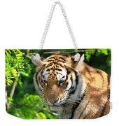 Bengal Tiger Portrait Weekender Tote Bag