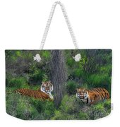 Bengal Tigers On Grassy Hillside Endangered Species Wildlife Rescue Weekender Tote Bag