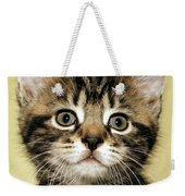 Benny The Pussy Cat Weekender Tote Bag