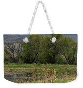 Benson Pond Weekender Tote Bag
