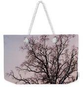 Bergen  Winter Tree Weekender Tote Bag by Hakon Soreide