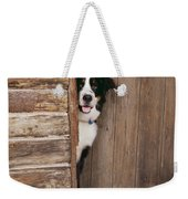 Bernese Mountain Dog At Log Cabin Door Weekender Tote Bag