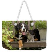 Bernese Mountain Puppy & Kitten Weekender Tote Bag