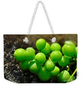 Berries On Water Weekender Tote Bag by Kaye Menner