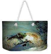 Between A Frog And A Hard Place Weekender Tote Bag