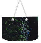Between The Hedges  Weekender Tote Bag by First Star Art