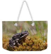 Beutiful Frog On The Moss Weekender Tote Bag