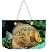 Big Beautiful Fish Weekender Tote Bag