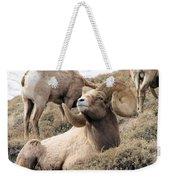 Big Bighorn Ram Weekender Tote Bag