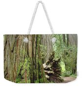 Big California Redwood Tree Forest Art Prints Weekender Tote Bag