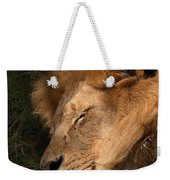 Big Cat Nap Weekender Tote Bag