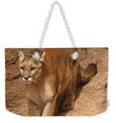 Big Cats Weekender Tote Bag