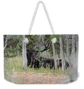 Big Daddy The Moose 1 Weekender Tote Bag