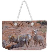 Big Horn Group Pose Weekender Tote Bag