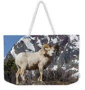 Big Horn Ram In Spring Weekender Tote Bag