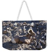 Big Horn Sheep Close Up Weekender Tote Bag
