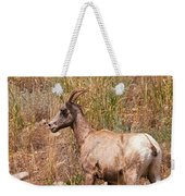 Big Horn Sheep Ewe Weekender Tote Bag