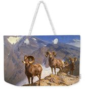 Big Horn Sheep On Wilcox Pass Weekender Tote Bag