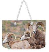 Big Horns Weekender Tote Bag