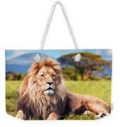 Big Lion Lying On Savannah Grass Weekender Tote Bag