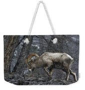 Bighorn Caught In A Blizzard Weekender Tote Bag
