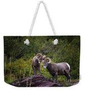 Bighorn Ram 4 Weekender Tote Bag