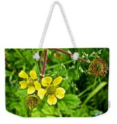 Bigleaf Avens Along Skunk Cabbage Trail In Mount Revelstoke National Park-british Columbia    Weekender Tote Bag
