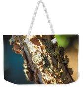 Birch Bark Weekender Tote Bag