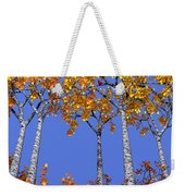 Birch Grove Weekender Tote Bag by Cynthia Decker