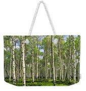Birch Tree Grove In Summer Weekender Tote Bag