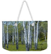 Birch Tree Grove No. 0133 A Fine Art Photograph Weekender Tote Bag
