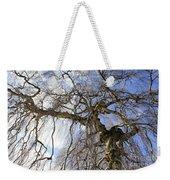 Birch Tree  Weekender Tote Bag