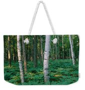 Birch Trees In A Forest Weekender Tote Bag