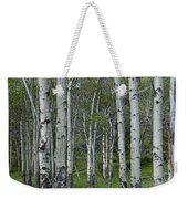 Birch Trees In A Grove No. 0148 Weekender Tote Bag