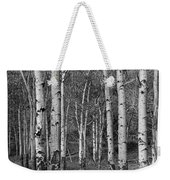 Birch Trees No.0148 Weekender Tote Bag