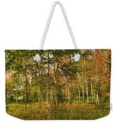 Birch Trees2 Weekender Tote Bag