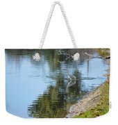Bird And Pond Weekender Tote Bag