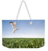 Bird Flying Over Green Grass Weekender Tote Bag