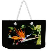Grotto Bay Bird Of Paradise # 1 Weekender Tote Bag