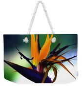 Bird Of Paradise Flower - Square Weekender Tote Bag