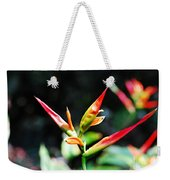 Bird Of Paradise Plant Weekender Tote Bag