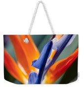 Bird Of Paradise - Strelitzia Reginae  Weekender Tote Bag