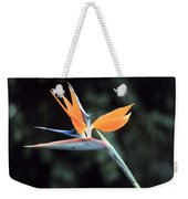Bird Of Paridise Weekender Tote Bag