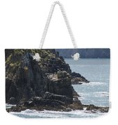 Bird Paradise On Cook Strait Weekender Tote Bag