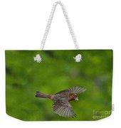 Bird Soaring With Food In Beak Weekender Tote Bag