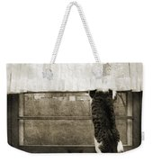 Bird Watching Kitty Cat Bw Weekender Tote Bag by Andee Design