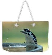 Birdbath Funtime Weekender Tote Bag